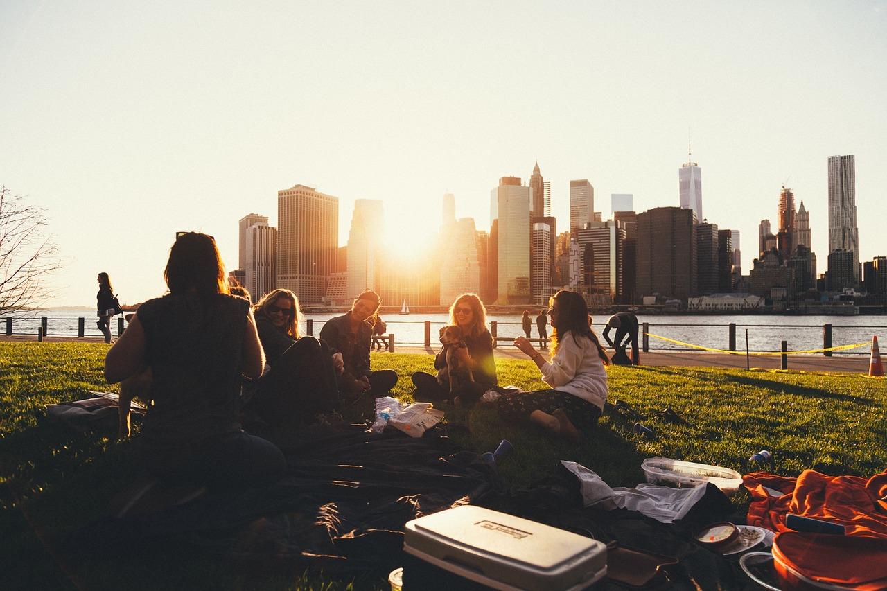 picnic, social, energy, fun